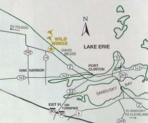 wild wings marina map